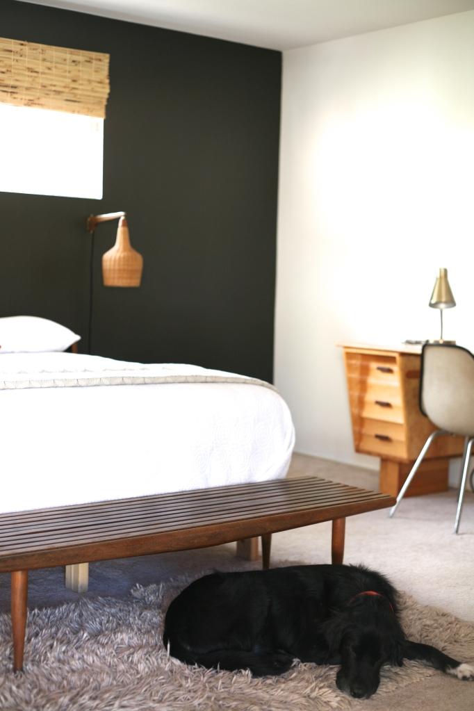 Mid century bedroom with dog