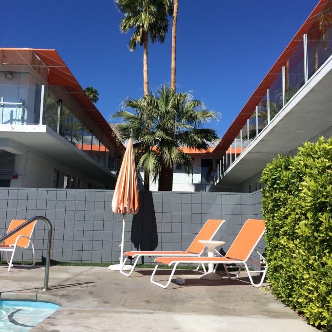 Palm Springs hotel pool palm trees